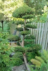 les 179 meilleures images du tableau niwaki sur pinterest With good jardin de rocaille photos 1 les jardins du gue grande rocaille