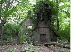 ruins, architecture, buildings, woods Wallpapers