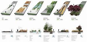 High Line Vegetation Analysis