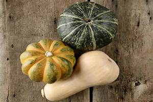 Chart For Carbohydrates In Food Squash Vs Zucchini Difference And Comparison Diffen