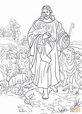 Coloring Shepherd 86kb 1145 1600px sketch template
