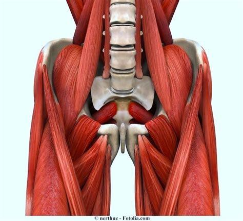 douleur 224 la cuisse gauche ou droite int 233 rieur ant 233 rieur et ext 233 rieur physiotherapie pour tous