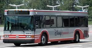 Today's Disney photo: Futuristic bus? – A GATOR IN NAPLES