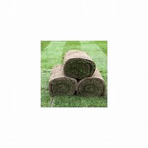 Rouleau Gazon Naturel : gazon naturel en rouleau x 10 m2 10 rouleaux de 0 4m x 2 ~ Melissatoandfro.com Idées de Décoration