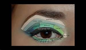 Parts Of Eyelid When Applying Eye Makeup