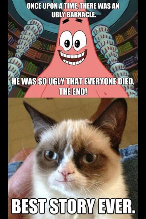 Grumpy Cat Meme Clean - top 29 most funniest animals quotes funny animal quotes funny animal and animal