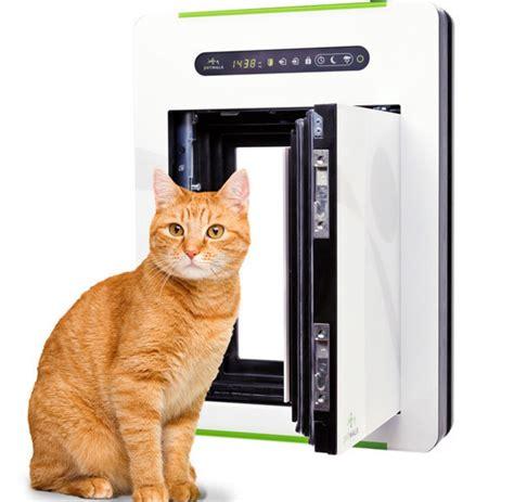 das geschaeft mit der katze cafes katzenfutter kosten