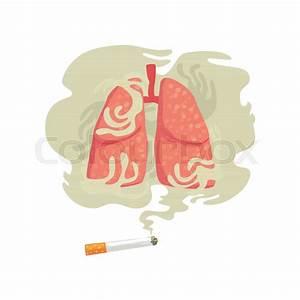 Cigarette Smoke And Lungs  Bad Habit  Dangers Of Smoking