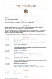 sle resume for freelance writer sales and marketing consultant resume
