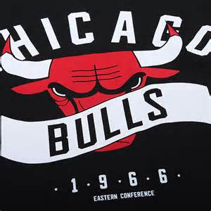 NBA Chicago Bulls Team