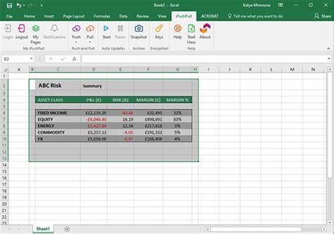 how to embed any data from excel within pages