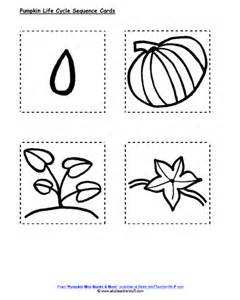 Life Cycle Of A Pumpkin Sequencing Worksheet by Pumpkin Life Cycle Sequencing Cards A To Z Teacher Stuff