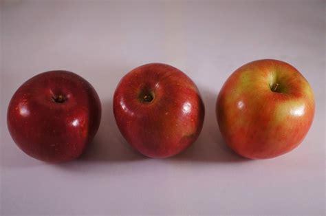 Free picture: fruit, antioxidant, apple, apples, calorie ...