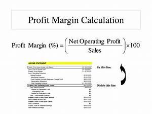 Net Profit Margin Equation - Tessshebaylo