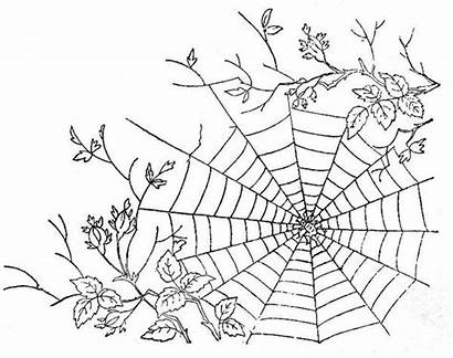 Spider Web Coloring Tree Branch Between Pages
