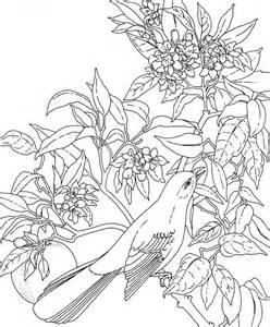 Hawaiian Flower Coloring Pages Free