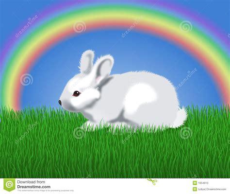 rabbit rainbow stock illustration illustration
