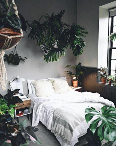 Bedroom Designs With Plants best garden instagrams plant photography accounts