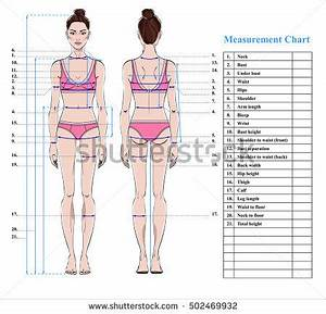 Woman Body Shape Stock Images, Royalty-Free Images ...