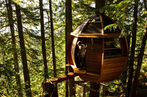 Hidden Egg Treehouse By Joel Allen : Joel Allen's Egg Shaped Treehouse/ski Cabin….