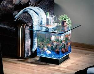 Cool Aquariums For Your Kids Room