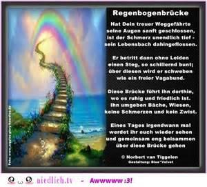 regenbogenbrücke hund sprüche die besten 17 ideen zu regenbogenbrücke auf regenbogenbrücken hund