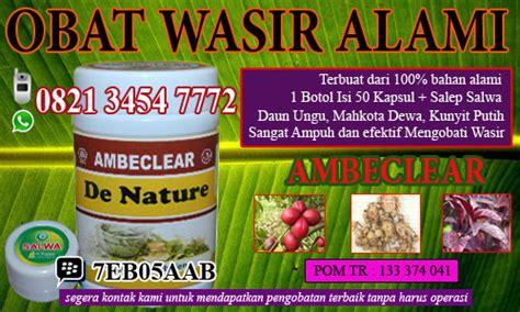 obat herbal ambeien tradisional tanaman obat ambeien