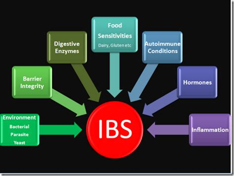 hidden scientific   ibs   doctor doesn