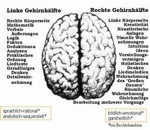 Rechte Ab 14 : test rechte oder linke gehirnh lfte aktiv systemische und familienaufstellungen berlin ~ Orissabook.com Haus und Dekorationen