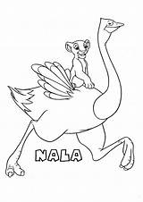 Coloring Ostrich Nala Lion King Printable Disney Getcolorings Animal Ostriches sketch template
