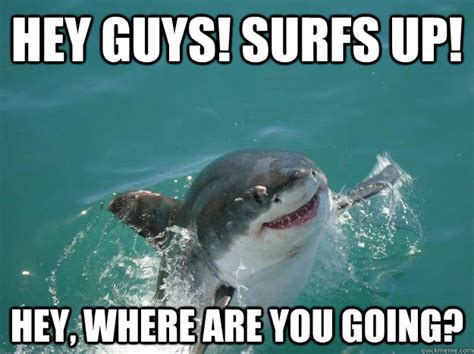 Where Are You Meme Hey Guys Surfs Up Hey Where Are You Going Misc