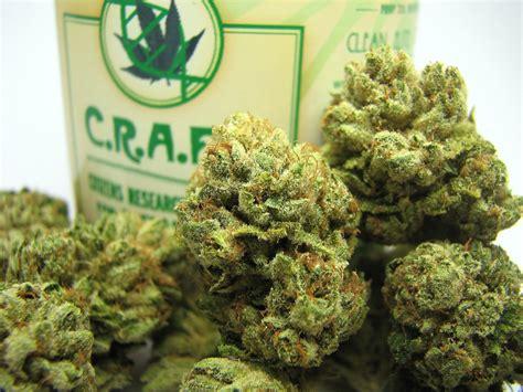 bester cannabis dünger best marijuana strains skywalker og review c r a f t collective berkeley smell the