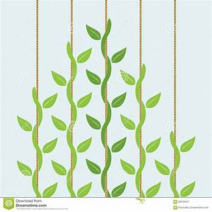 Climbing plant clipart - Clipground
