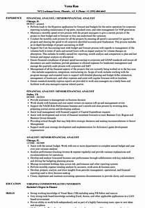 Sample Snag List Financial Analyst Resume Sample Ipasphoto