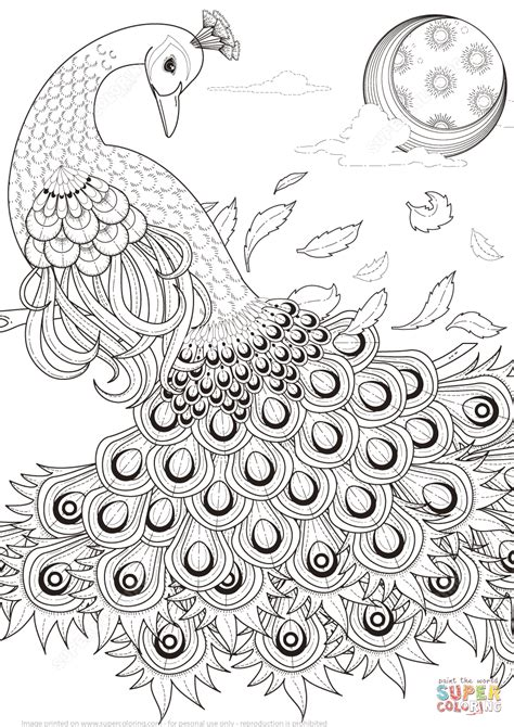 peacock coloring pages for adults peacock coloring pages for adults coloring home