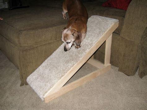 how to dogs diy dog r petdiys com