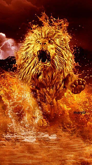 fire lion lion art fire lion fire art