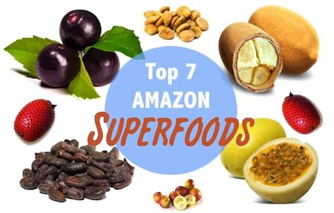 amazon cuisine top 7 amazon superfoods rainforest cruises