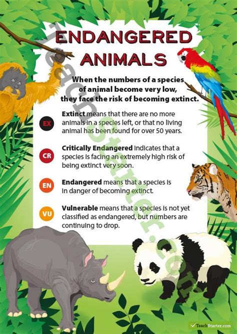 animals endangered poster extinct species animal save classification resources teaching zoo teach activities lessons starter topic science wild posters resource