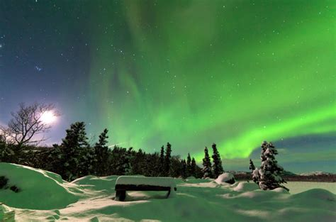 alaska northern lights tour arctic circle and northern lights tour from fairbanks 2017