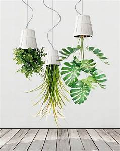 Hängende Pflanzen Für Draußen : h ngende pflanzen kopf ber deko ideen zimmerpflanzen ~ Sanjose-hotels-ca.com Haus und Dekorationen