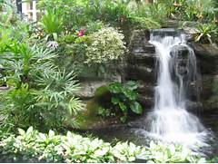 Garden Waterfall Design 9 E1281724620820 Waterfall Enhances The Beauty Backyard Waterfalls Design Ideas By ClifRock YouTube Pin Landscape Small Backyard Ponds Waterfalls On Pinterest Backyard Waterfall Will Create A Soothing Environment The Green
