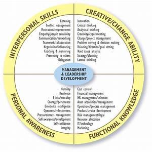 Management  U0026 Leadership Development Diagram