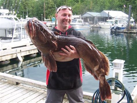 fishing vancouver island report sport