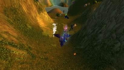 Cat Follow Wow Quest Warcraft Dieser Folgt