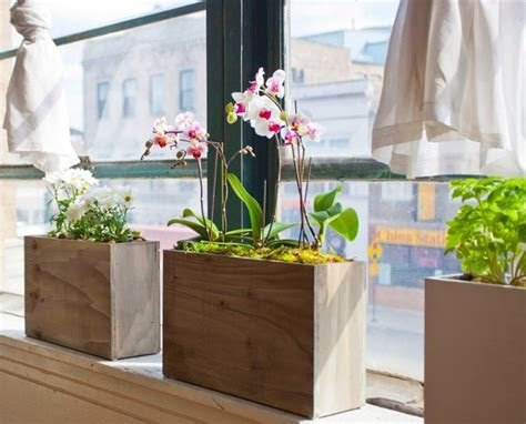 Indoor Windowsill Flowers by New Stylish And Simple Hydroponic Windowsill Planter