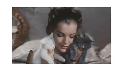Romy Schneider Movie Cat Posted Gifs Names