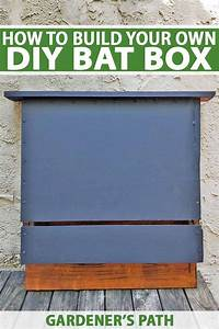 How To Build A Bat Box With Diy Instructions