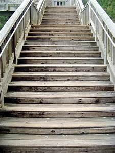 Holztreppe Außen Selber Bauen : 4 varianten der holztreppe ~ Buech-reservation.com Haus und Dekorationen
