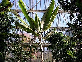 Botanischer Garten Berlin Leitung by Botanischer Garten Berlin